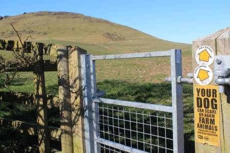 Dog owners asked to 'Take the Lead' in responsible enjoyment of the British Countryside