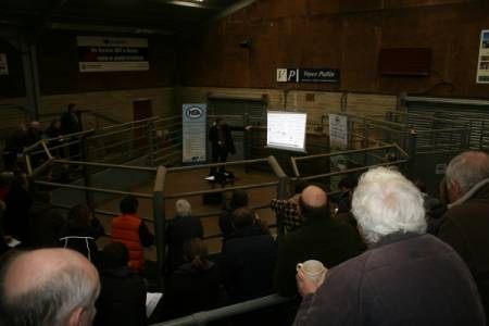 Sheep farmers flock to electronic movement database meetings
