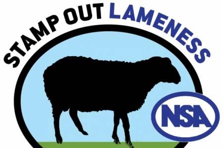 Stamp Out Lameness seminars to run at Royal Welsh Show