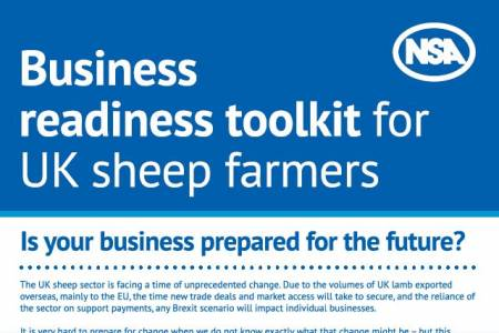 NSA launches toolkit to help sheep farmers prepare businesses for the future