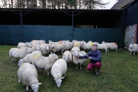 Lucky Powys sheep farmer receives early Christmas gift