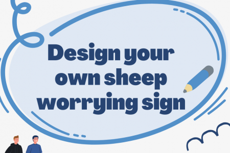 NSA competition asks children to help in the fight against sheep worrying by dogs