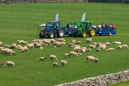 NSA update on NSA Sheep Event and NSA ScotSheep Event 2020