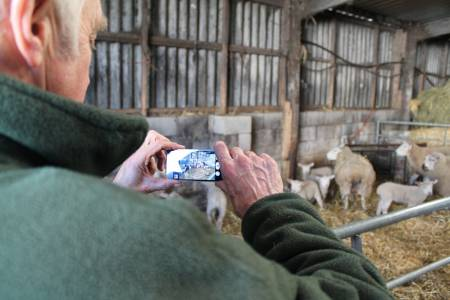 New video competition to feature at NSA Sheep Event 2014
