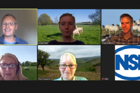 Sheep farmers encouraged to update their nutritional knowledge with NSA webinars