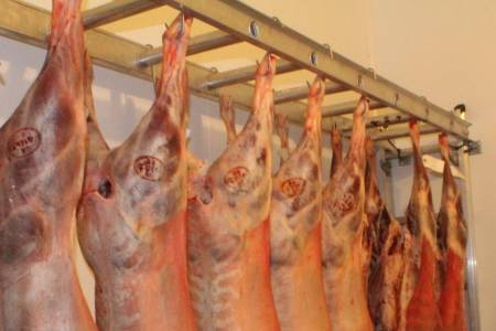 NSA alerts sheep industry of likely U-turn on promised changes to carcass splitting rules