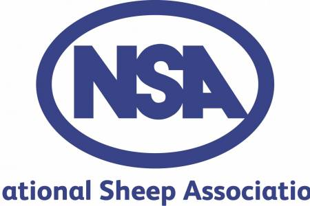 NSA calls for Gove to get behind British sheep farming - and quickly