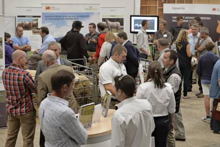 Optimistic outlook for sheep sector showcased