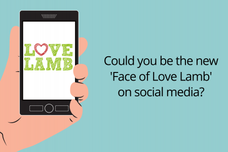 Search is on to find the 'Face of Love Lamb'