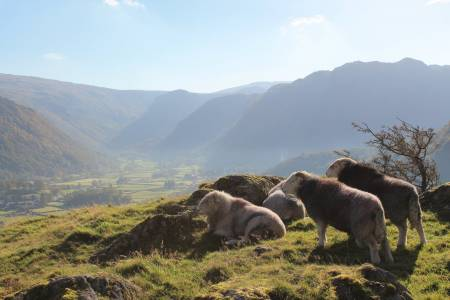NSA Responds to criticism of Lake District UNESCO World Heritage status