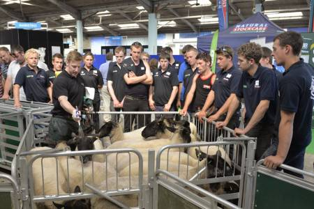 NSA Sheep 2014 to focus on the industry's future