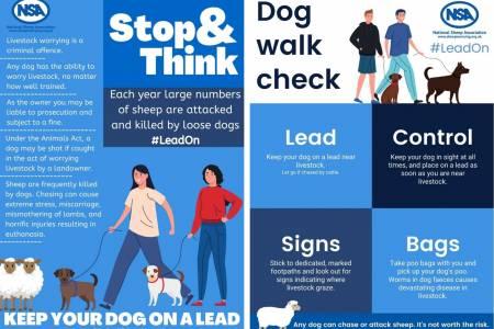 Dog Control Signs