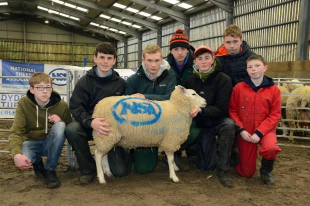 NSA Welsh Sheep 2019 Report