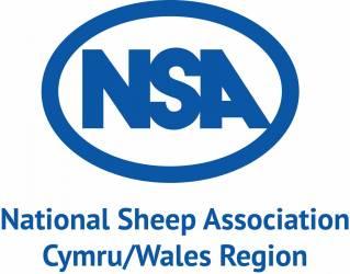 NSA Cymru/Wales Region Next Generation Shepherd Competition