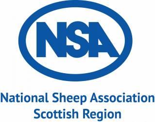Lynx webinar by NSA Scottish Region