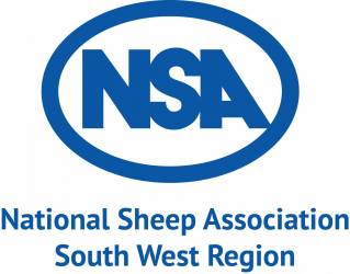 NSA South West Region Young Shepherd Competition