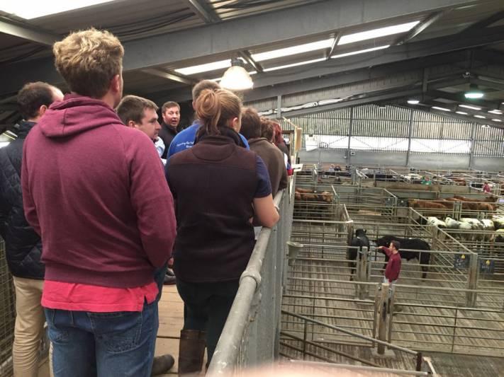 NSA Next Generation Ambassadors visit the facilities at Craven Cattle Marts (CCM), Skipton.