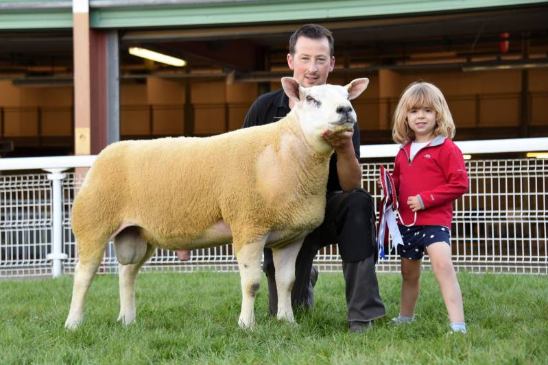 Champion Texel from WO & PE Reed, Haverfordwest