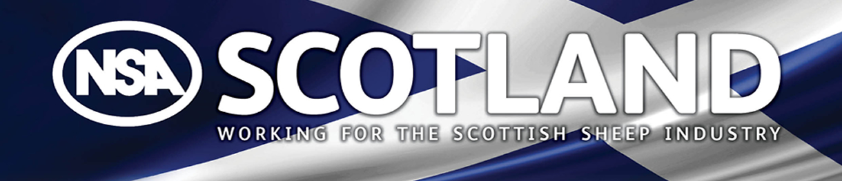 NSA Scotland - Working for the Scottish Sheep Industry