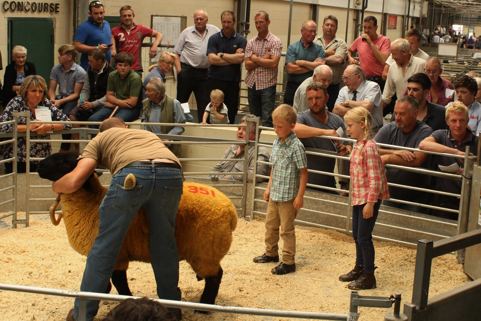 NSA South West Ram Sale