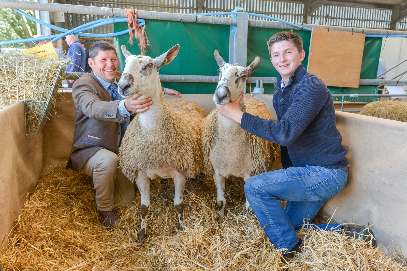Auction top price 1,200 gns Bluefaced Leicester hoggs: Midlock - Alan Wight and Ben Wight.