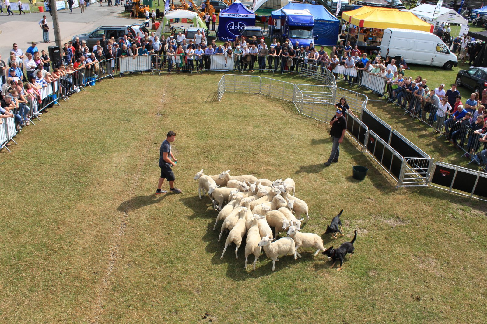 Kelpie demonstrations took place throughout the day
