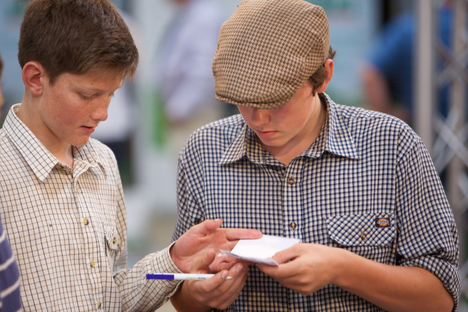 Competitors taking part in the stockjudging challenges