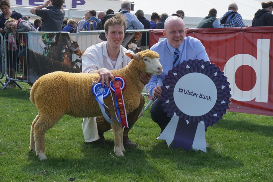 Stewart Adamson collects the Ile de France breed championship title.