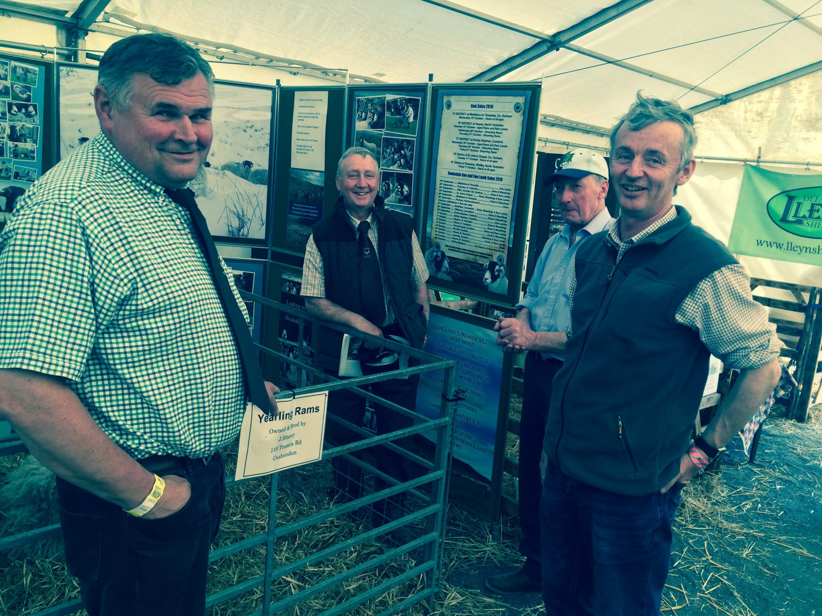 The NSA Sheep Centre provided a focus on the sheep sector for people to do business in a friendly environment