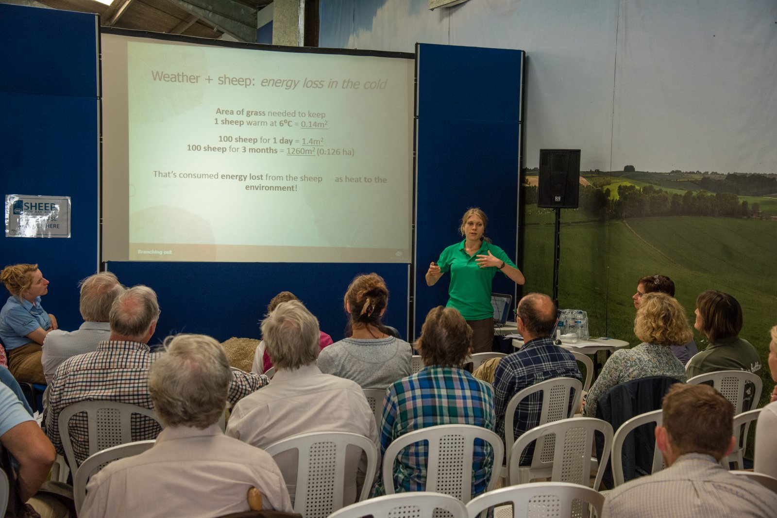 A relatively new addition to NSA Sheep Events, the workshop area was again a popular attraction